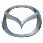 Vacuum-Coating-Skoda-Auto-Car-logo-emblems